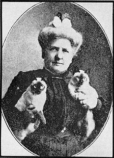 Mrs Clinton Locke with Siamese kittens