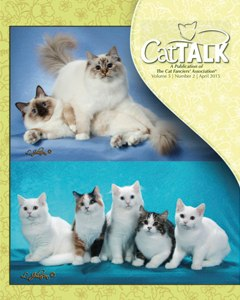 CatTalk